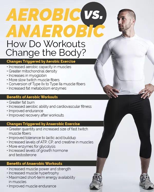 Aerobic Vs Anaerobic How Do Workouts Change The Body Aerobics Workout Aerobics Anaerobic Exercise