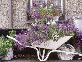 Idéias para campos e jardins: Carroças e Carriolas decoradas