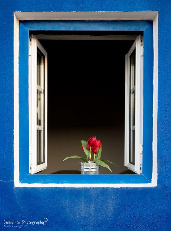Холодный цвет индиго – средний между тёмно-синим и фиолетовым – в городских и архитектурных фотографиях со всего мира.Название произошло от растения индиго, произрастающего в Индии, из которого добывали соответствующий краситель. Станция Киото. Автор фото: Хуан Карлос Сантамария Утопия. Автор фото: Читать далее   23 фантастичесчих фотографий с цветом индиго→