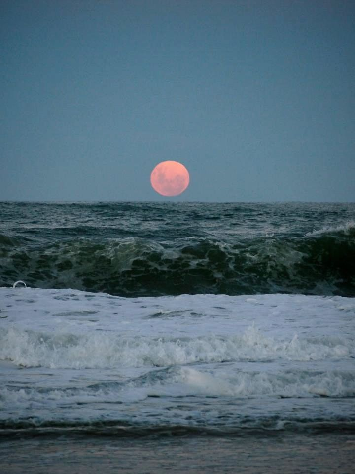 dead-lemons:  moonriseMoon 4, Ignite Lights, Nature, The Ocean, Beautiful Moments, At The Beach, Afternoon Walks, The Waves, The Moon
