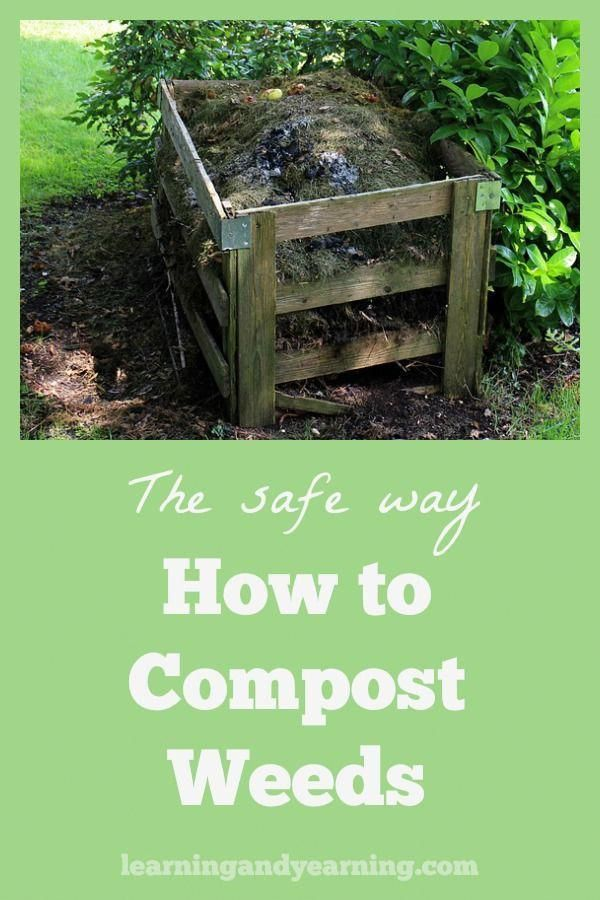 Throwing Weeds In The Landfill Means That You Are Throwing Precious Nutrients Away Instead Learn To Compost Them The Proper Way So Tha Garden Soil Organic Gardening Tips Organic Gardening