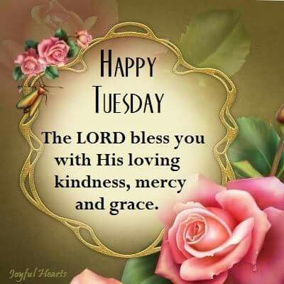 Happy Tuesday day good morning tuesday tuesday quotes happy tuesday tuesday images good morning tuesday tuesday quote images