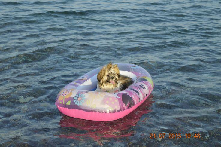 Sissy the sailor girl!!!