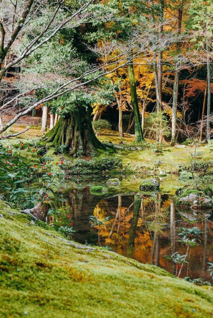 Visiting Saiho-ji, Kyoto's Moss Temple — Nomad in Nihon