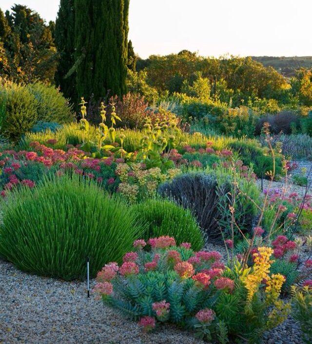 74 best images about gravel gardens on pinterest gardens for Giardino mediterraneo