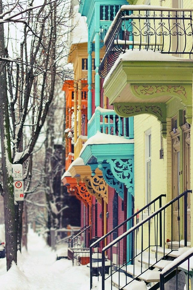 Snow-Covered Color-Blocking in Montreal