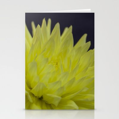 A Yellow Dahlia.  Available as card, print, phone case etc.  Click link to view more