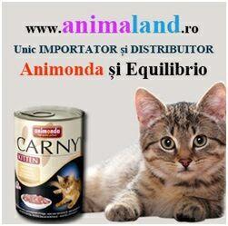 O dietă sănatoasă si echilibrată este esențială pentru pisica ta, deoarece majoritatea problemelor de sănătate au la bază o dietă necorespunzatoare.