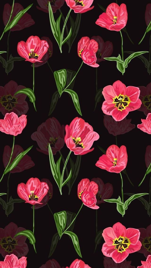 Wallpaper Iphone Black And Magenta Poppy With Images Cellphone