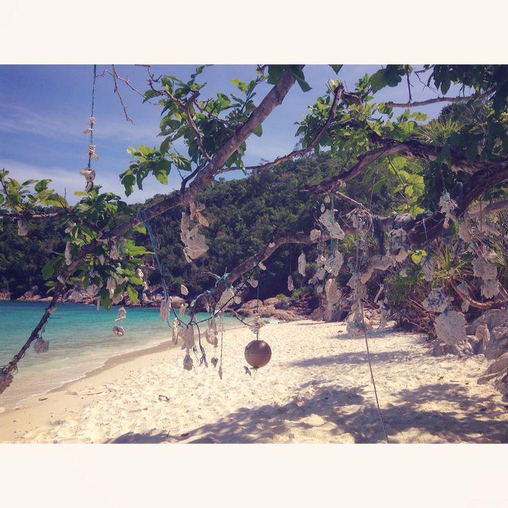 Seashell tree, Romantic beach. Perhantian island, Malaisie.