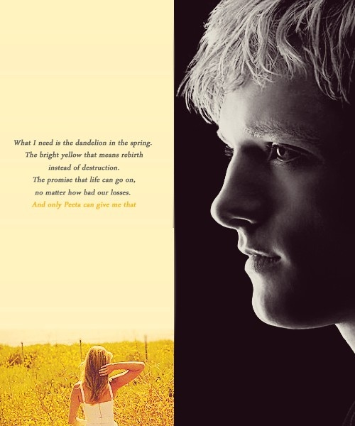 this is my favorite hunger games trilogy quote. it explains what it's all about.
