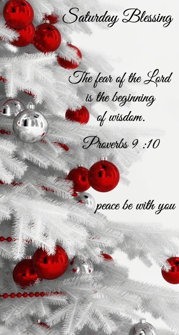 The fear of the Lord, is the beginning of wisdom. Proverbs 9:10