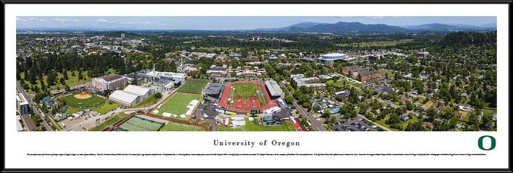 Oregon Campus during Prefontaine Classic Panoramic Poster $99.95