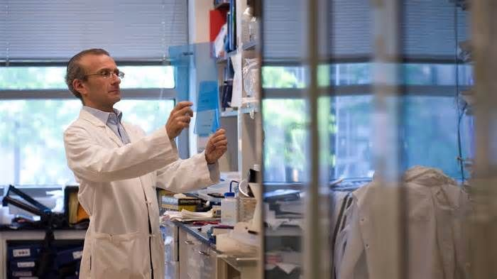Can you teach a cell new tricks? Diabetes research aims to do just that. Accili's lab also unlocked an intriguing secret about the dysfunctional insulin-producing beta cells in Type 2 diabetes. It was long thought that the beta cells were destroyed in Type 2 disease, as they are in Type 1. But Accili found that the beta cells ...