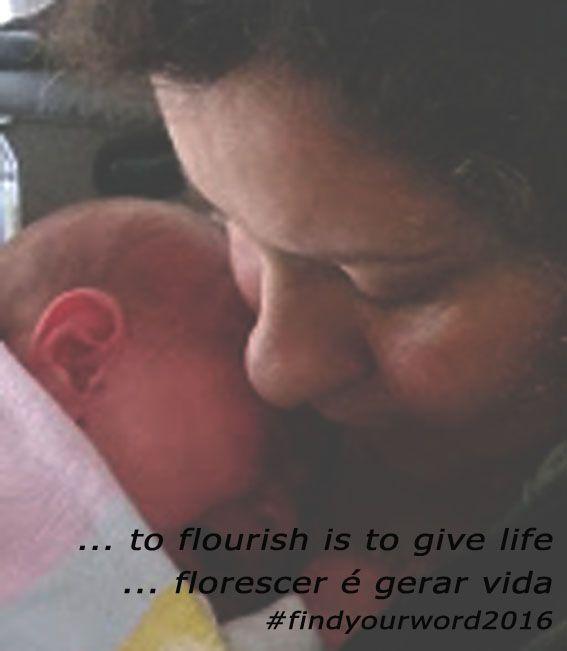 ... to flourish is to give life ... florescer é gerar vida #findyourword2016 #prosperar #florescer #flourish
