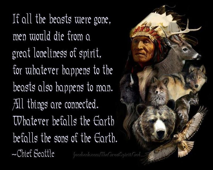 If all the beasts were gone, men would die from a great loneliness of spirit, for whatever happens to the beasts also happens to man. All things are connected. Whatever befalls the Earth befalls the sons of the Earth. ~Chief Seattle~