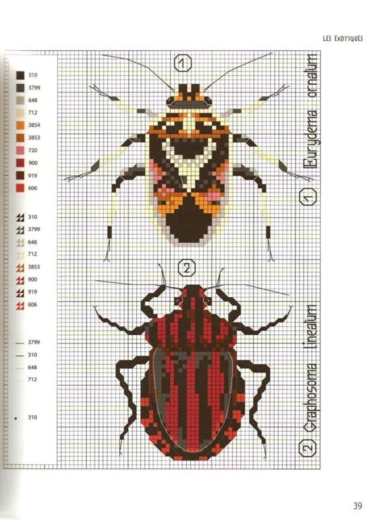 Gallery.ru / Photo # 40 - MARABOUT Insects - tatasha Cross stitch scientific diagrams insects labelled victorian insect collection