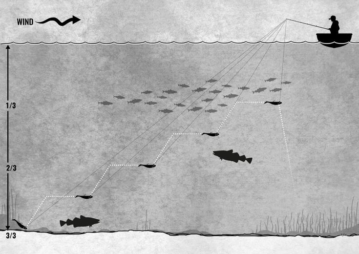 Fishing with shad for cod | Dorschangeln mit Gummifisch