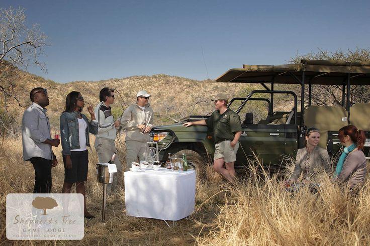 Shepherd's Tree Game Lodge - http://www.shepherdstree.co.za/