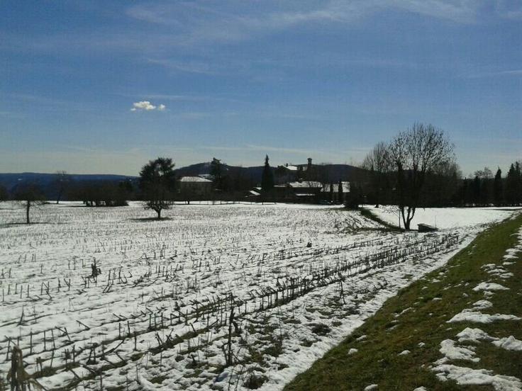 La neve fatica ad andarsene dai campi del #Vergante. #MassinoVisconti ( #Novara #Piedmont #Italy )