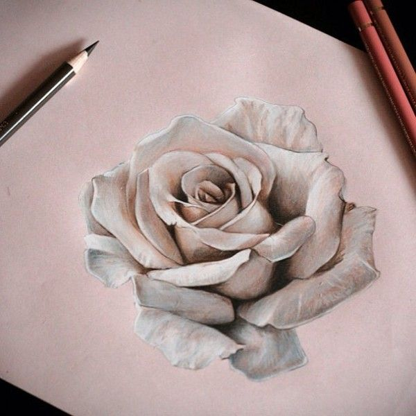 oh my gosh, I bet a white rose tattooed on the collar bone/shoulder would be absolutely stunning!