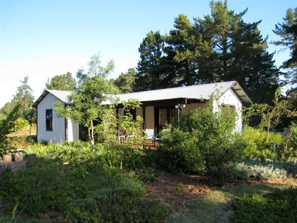Eagles Call Self-Catering Cottage
