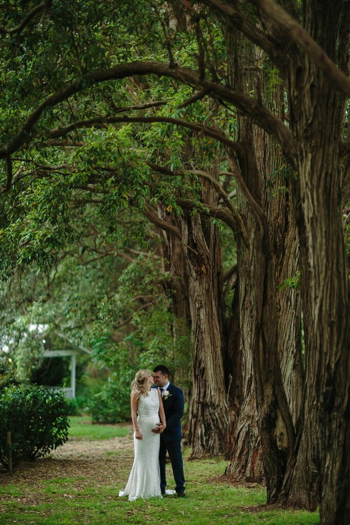 Kelly + Luke tree lined garden walk #wedding #photos #garden #bellsatkillcare