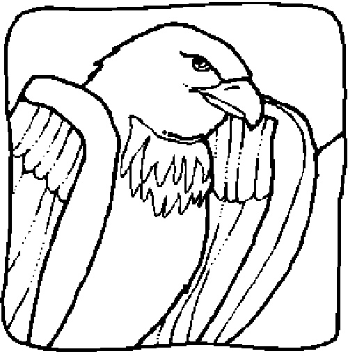 1000+ images about Eagle Coloring Pages on Pinterest ...