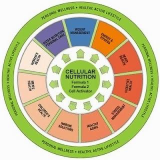 Herbalife memaksimalkan Nutrisi Seluler melalui formulasi ilmiah yang unik, yaitu pemilihan campuran bahan baku berkualitas tinggi dan metode yang digunakan untuk mempertahankan/menjaga nilai nutrisinya.  Cara kami menciptakan program khusus yang sesuai kebutuhan setiap individu itu-lah yang merupakan keunggulan Herbalife