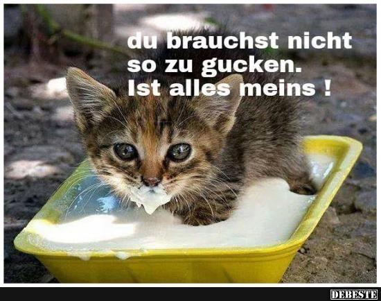 Du brauchst nicht so zu gucken.. | DEBESTE.de, Lustige Bilder, Sprüche, Witze und Videos