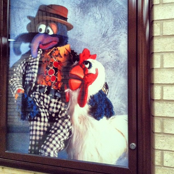 17 Best Images About Muppet Love! On Pinterest