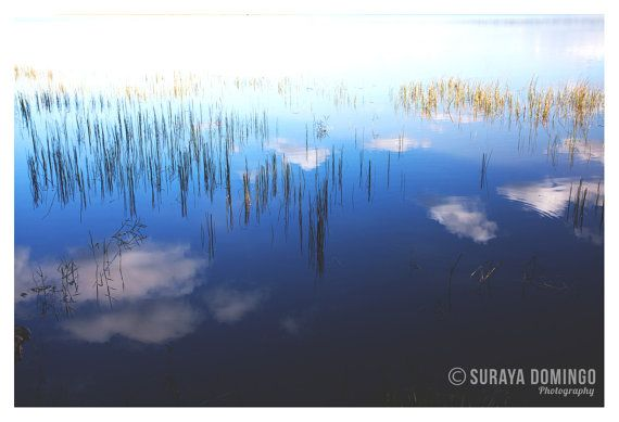Infinite Lake Sky Reeds Reflection Nature by SurayaDomingo on Etsy, £19.95