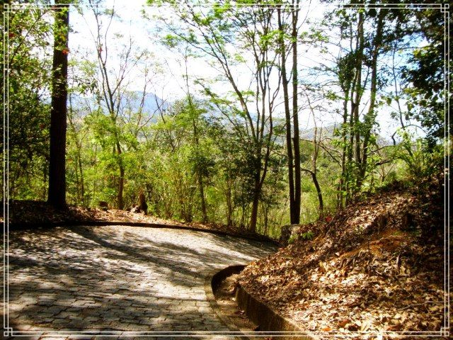 Trilha de acesso ao Mosteiro Zen Budista
