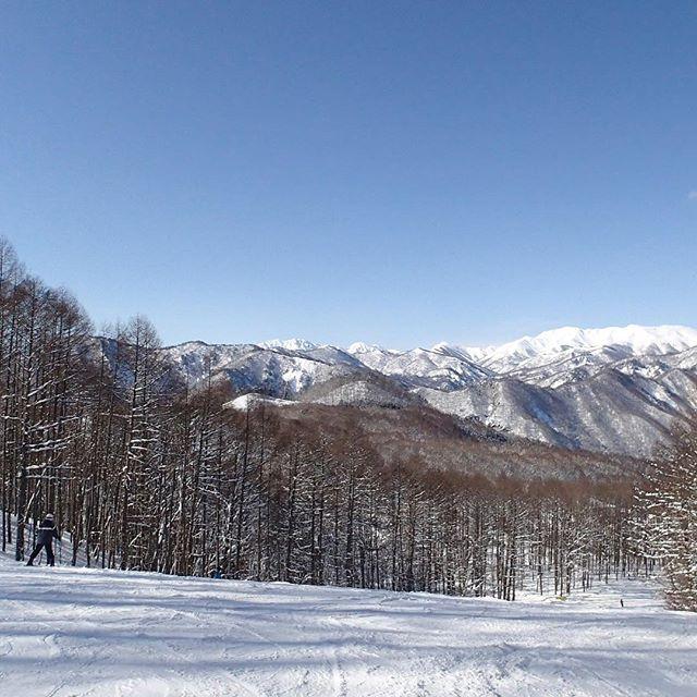 【zen440】さんのInstagramの写真をピンしています。《スキー #2013 #水上高原 #スキー場 #ゲレンデ #林 #雪 #青空 #景色 #山 #スキー #tbt #minakami #ski #skiing #mountain #slope #woods #snow #bluesky #beautiful #landscape #instagood #japan #写真好きな人と繋がりたい #風景》
