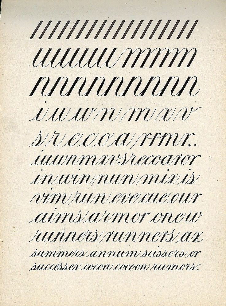 Best images about calligraphy exercise copperplate
