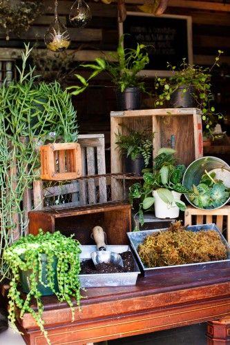 3 easy garden DIYs straight from the pros. Photos by Anna-Alexia Basile.: Garden Diys, Adult Apartment, Apartment Refinery29, Plants, Apartments Decorating, Vertical Garden, Photo, Diys Straight