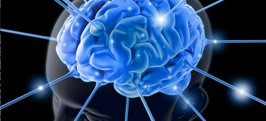 How To Use Neuroscience For Insight Into The Social Customer