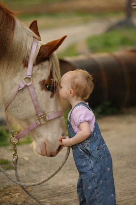 #hourse #baby #cute babies and pets  cute funny  | Cute Babies Pics & Wallpapers: Lovely Babies and Pets Pictures to ...
