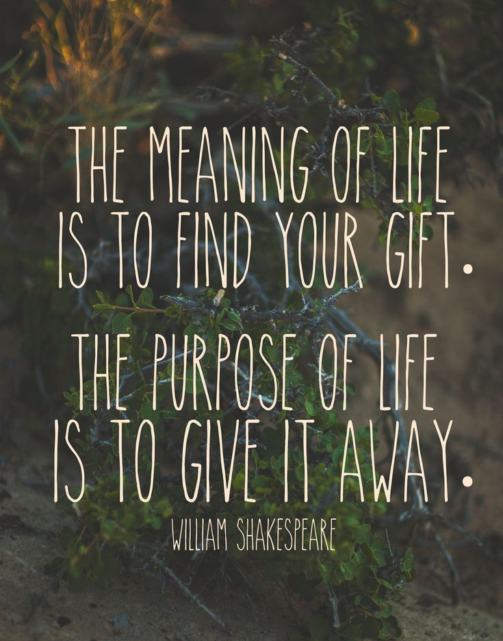 'The meaning of life is to find your gift. The purpose of life is togive it away.' ~ William Shakespeare