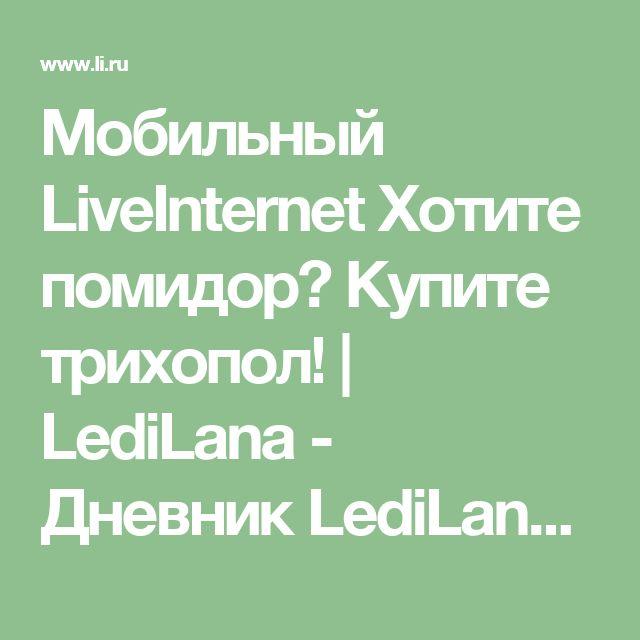 """Мобильный LiveInternet Хотите помидор? Купите трихопол!   LediLana - Дневник LediLana """" О самом интересном и познавательном""""  """