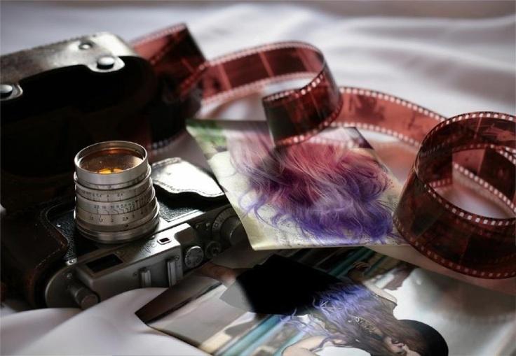purple ombre: Picture, Photos, Camera Film, Edonnabelle Photography, Amazing Photography, Art Photography, Film Photography, Country Artists, Cameras