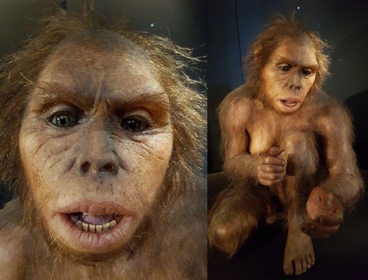 Homo habilis (MEH), by Elisabeth Daynès. Photo: Roberto Sáez