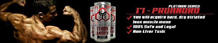 17 Pro Andro