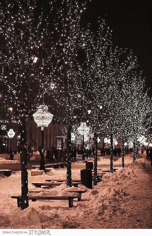 NYC sure knows how to sparkle during the holiday season!