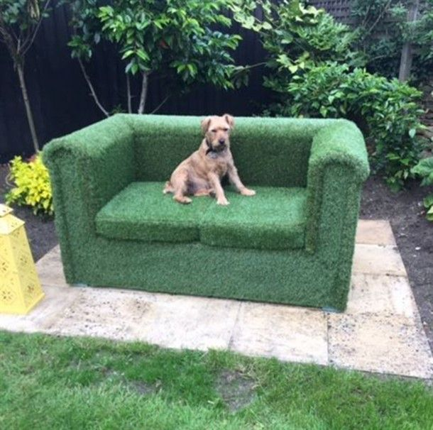 Garden Furniture Ideas With The Art Of Grass Sculpting 2020 Bahce