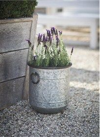 Keep favourite shrubs and flowers designed beautifully in the durable and weatherproof Malmesbury Planter Small