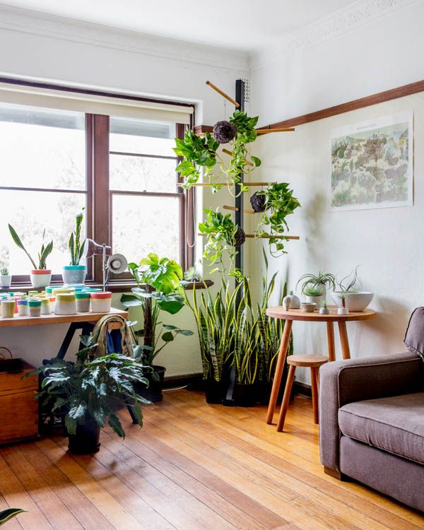 Love that plant stand.