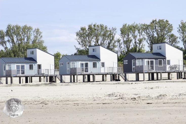 holland urlaub direkt am meer kamperland roompot beach. Black Bedroom Furniture Sets. Home Design Ideas