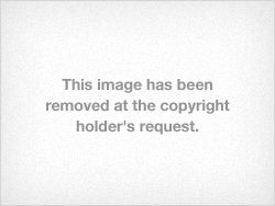"""Tumblr notice: """"This image has been removed at the copyright holder's request."""""""