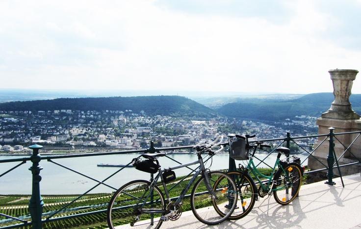 Am Niederwalddenkmal mit Blick auf Bingen (Rhein)